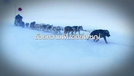 แกลอรีภาพ แอนตาร์กติกา ตอนที่ 1