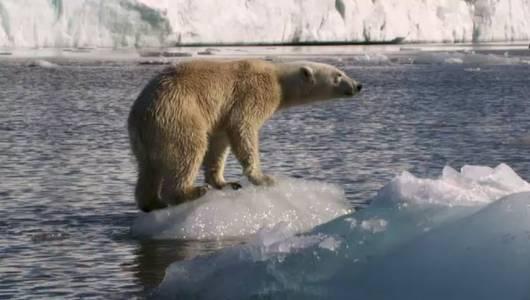 แกลอรีภาพ อัศจรรย์โลกน้ำแข็ง ตอน ฤดูร้อน