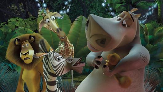 แกลอรีภาพ Madagascar มาดากัสการ์