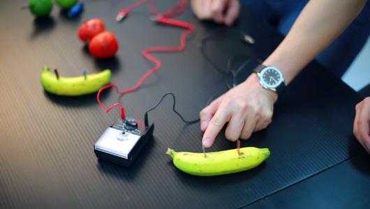 แกลอรีภาพ พลังไฟฟ้าจากผลไม้