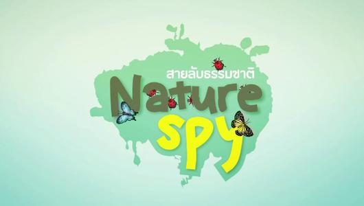 แกลอรีภาพ เร็วๆนี้ที่ Thai PBS 15 – 21 ม.ค. 58
