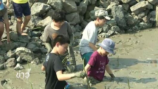 แกลอรีภาพ สภาลุ่มน้ำท่าจีนเรียกร้องระบบเตือนภัยน้ำเค็ม