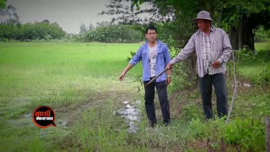 แกลอรีภาพ ตรวจสอบฟาร์มหมูปล่อยน้ำเสีย อ.ปากท่อ จ.ราชบุรี