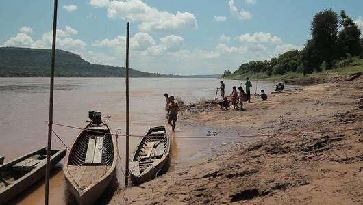 แกลอรีภาพ ไส้เดือนสะเทินน้ำสะเทินบกแม่น้ำโขง