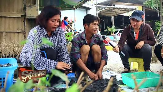 แกลอรีภาพ เยาวชนนานาชาติเรียนรู้การรับมือสึนามิในอินโดนีเซีย