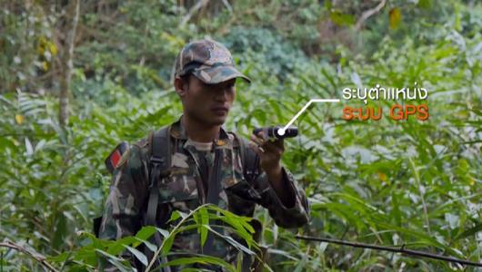 แกลอรีภาพ ผู้พิทักษ์ผืนป่ามรดกโลก