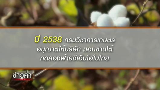 แกลอรีภาพ ย้อนรอย พืชดัดแปลงพันธุกรรม GMOs พ.ร.บ.ความปลอดภัยชีวภาพ